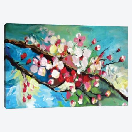 Cherry Blossom Canvas Print #DZH141} by Radiana Christova Canvas Art
