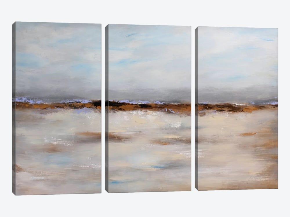 Harmonious Memories by Radiana Christova 3-piece Canvas Art
