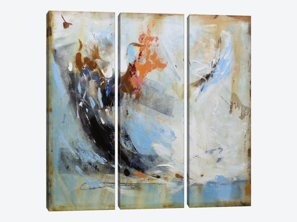 Passion I by Radiana Christova 3-piece Canvas Art Print