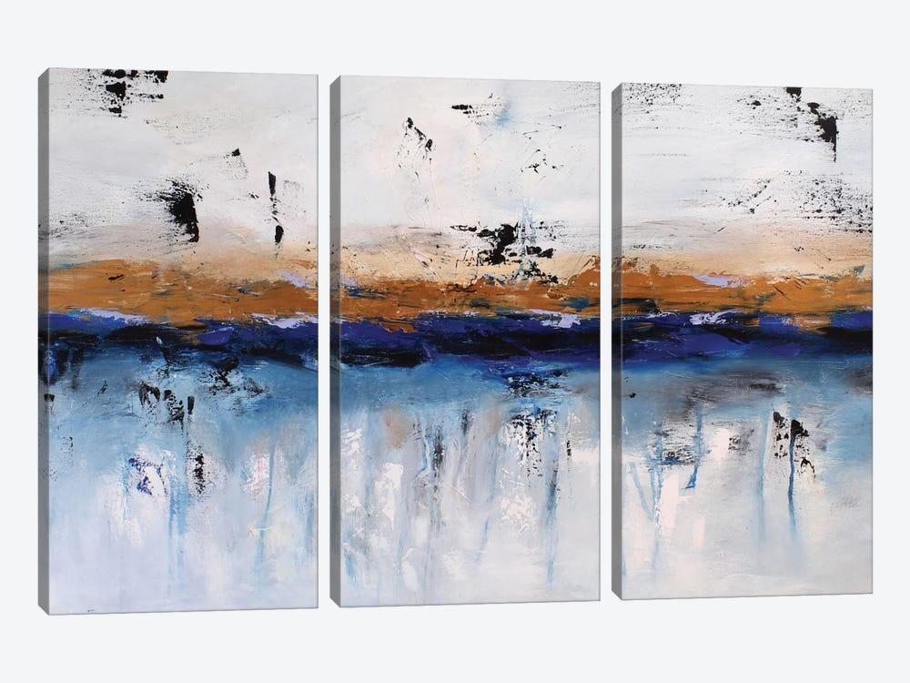 Rainy Day by Radiana Christova 3-piece Canvas Artwork