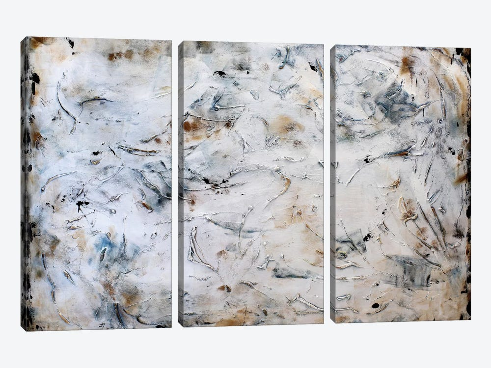 Rusty Abstract by Radiana Christova 3-piece Canvas Artwork