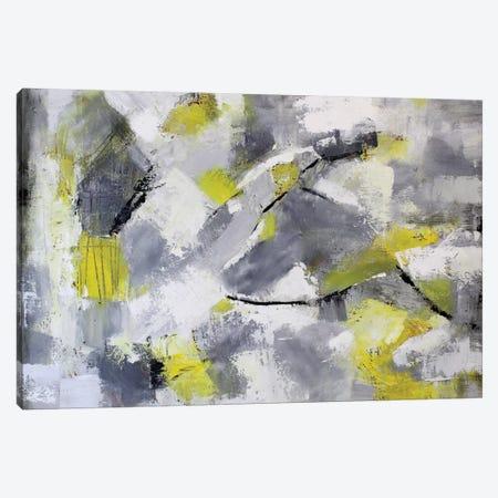 Searching Canvas Print #DZH53} by Radiana Christova Canvas Print