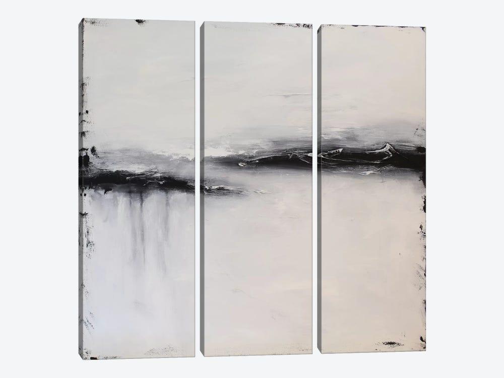 The Lonely Coast by Radiana Christova 3-piece Canvas Wall Art