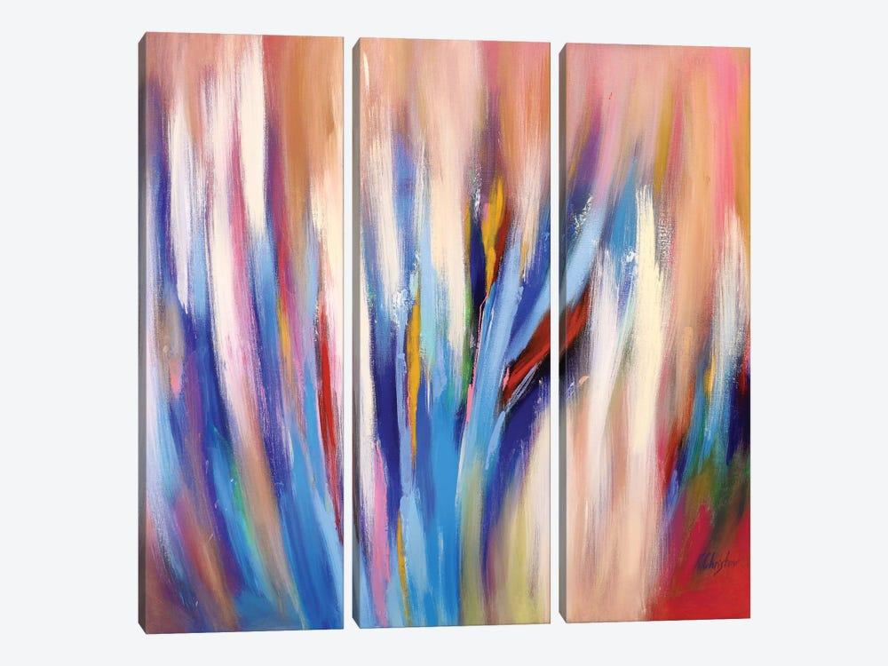 Abstract Garden IV by Radiana Christova 3-piece Canvas Artwork