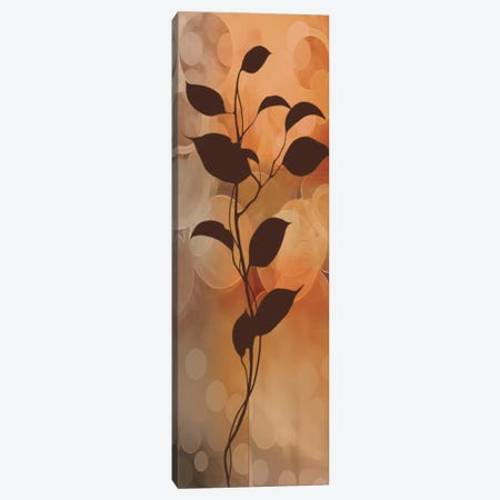 Flora II Canvas Print #EAP12} by Edward Aparicio Canvas Print