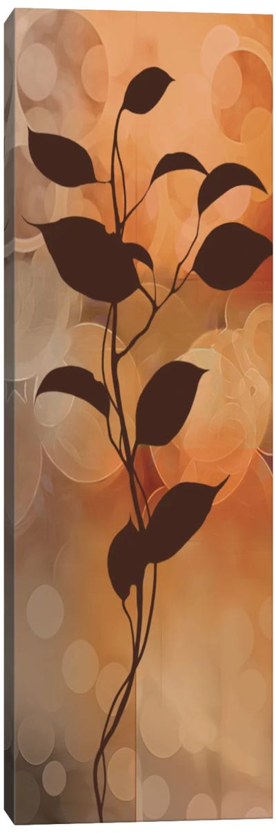 Flora II Canvas Art Print