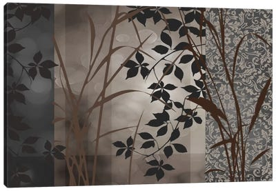 Silver Whispers I Canvas Art Print