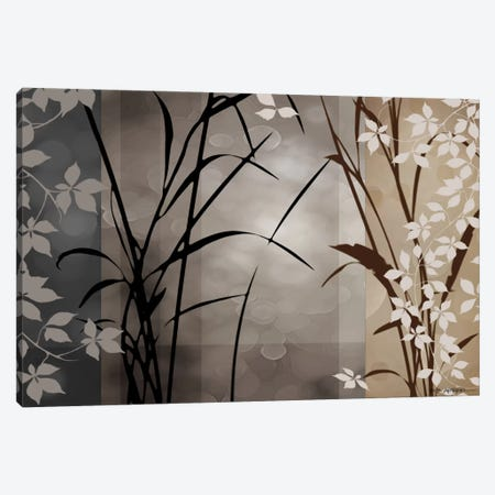 Silver Whispers II Canvas Print #EAP19} by Edward Aparicio Canvas Print