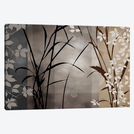 Silver Whispers II Canvas Print #EAP19} by Edward Aparicio Canvas Print