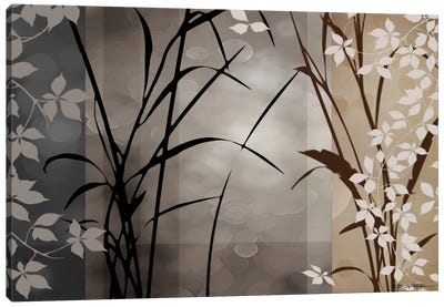 Silver Whispers II Canvas Art Print