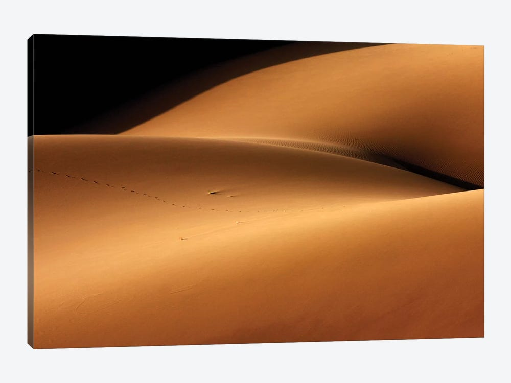 Desert And The Human Torso by Ebrahim bakhtari bonab 1-piece Canvas Print