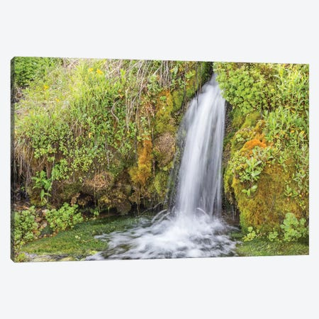 USA, Wyoming, Sublette County. Kendall Warm Springs, a small waterfall flowing over a mossy ledge. 3-Piece Canvas #EBO22} by Elizabeth Boehm Canvas Art Print