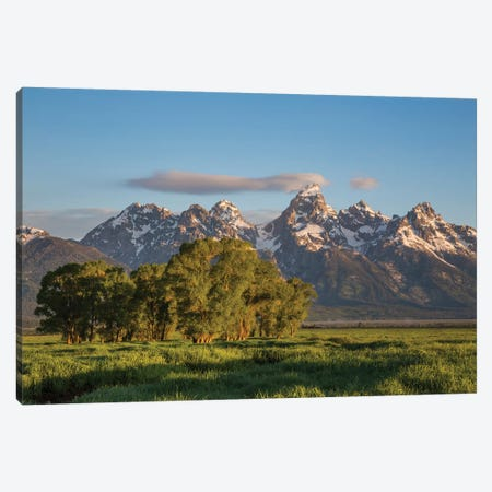 USA, Wyoming, Grand Teton National Park, Grand Tetons in the springtime. Canvas Print #EBO2} by Elizabeth Boehm Canvas Wall Art
