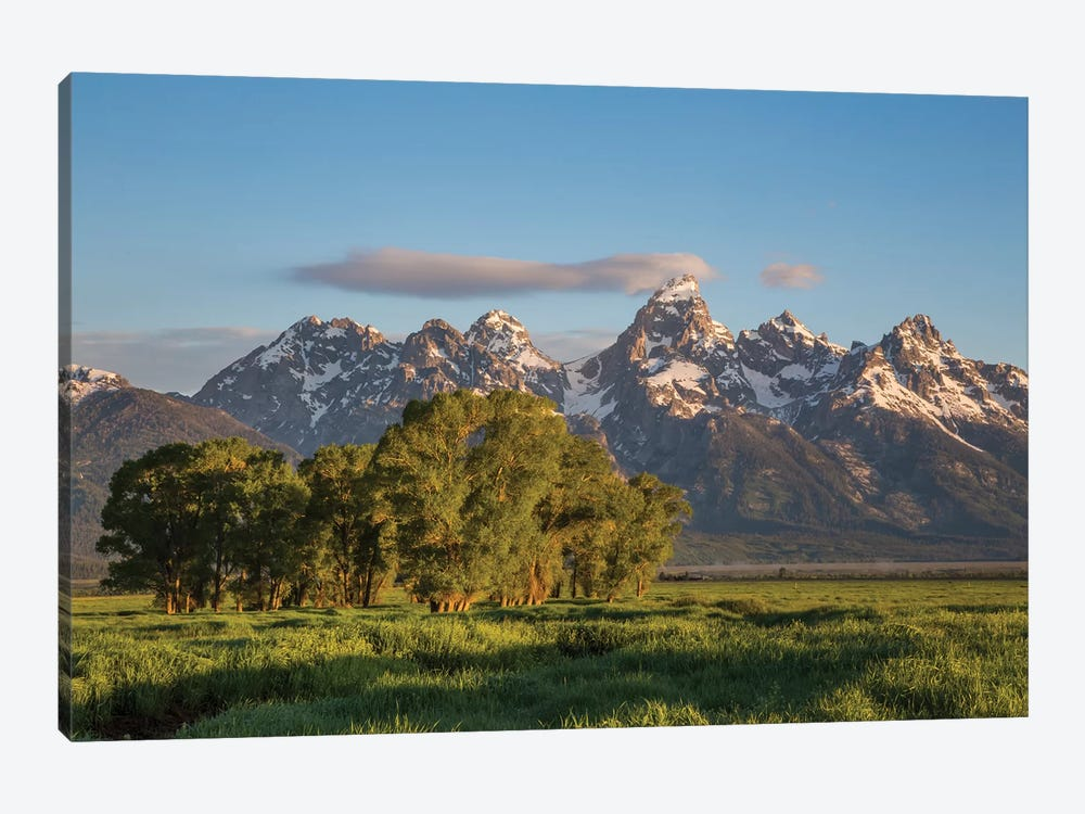USA, Wyoming, Grand Teton National Park, Grand Tetons in the springtime. by Elizabeth Boehm 1-piece Art Print