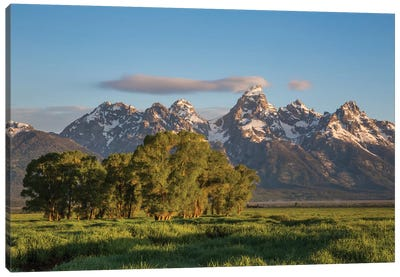 USA, Wyoming, Grand Teton National Park, Grand Tetons in the springtime. Canvas Art Print