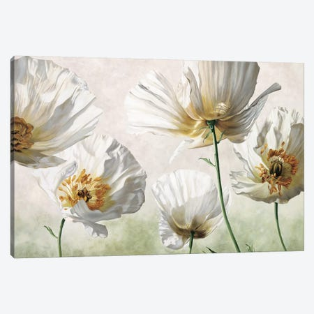 Raggi di sole Canvas Print #EBR10} by Eva Barberini Art Print
