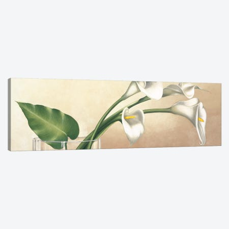 Vaso con calle bianche Canvas Print #EBR5} by Eva Barberini Canvas Art Print