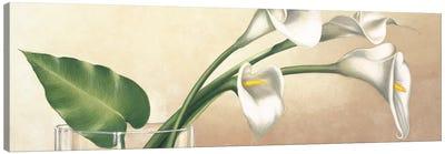 Vaso con calle bianche Canvas Art Print
