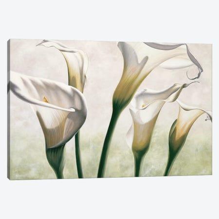 Luce Canvas Print #EBR9} by Eva Barberini Canvas Art