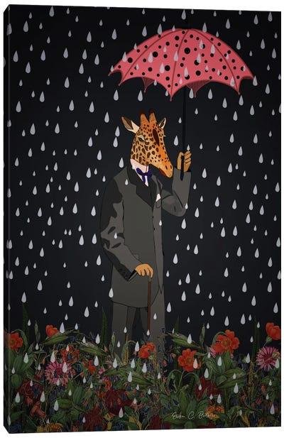Rainy Day Canvas Art Print