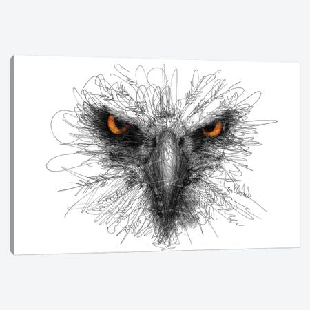 Eagle Look Canvas Print #ECE16} by Erick Centeno Canvas Art