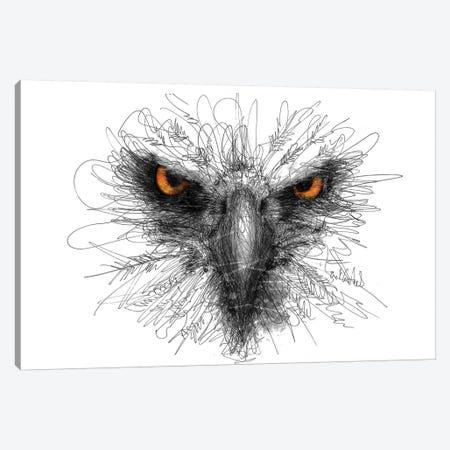 Eagle Look Canvas Print #ECE16} by Erick Centeno Canvas Art