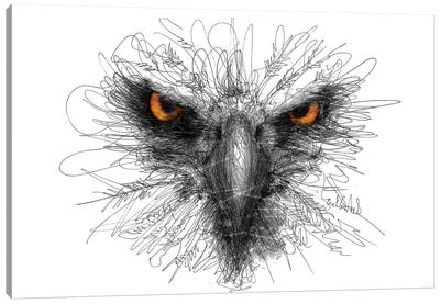 Eagle Look Canvas Art Print