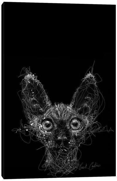 Cat Night Canvas Art Print