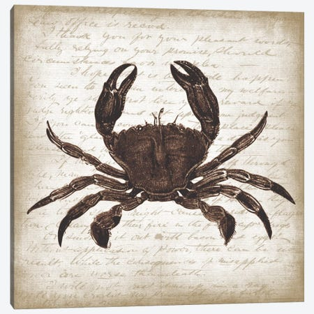 Crab I Canvas Print #ECK172} by Erin Clark Canvas Art Print