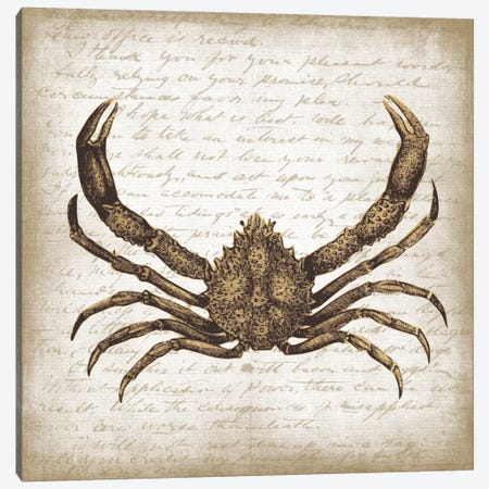 Crab II Canvas Print #ECK173} by Erin Clark Art Print