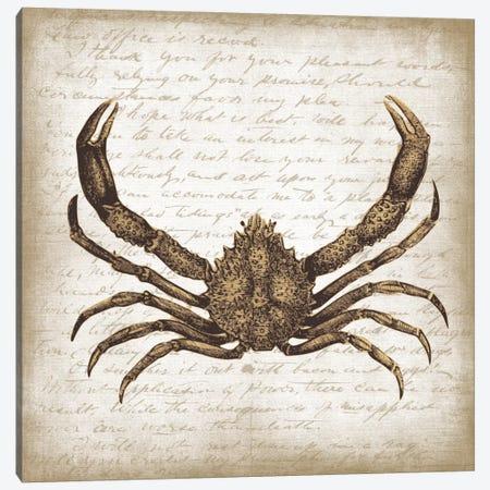 Crab II Canvas Print #ECK173} by Erin Clark Art Print