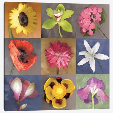 Flower Nine Canvas Print #ECK229} by Erin Clark Canvas Print