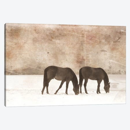 Grazing Pair Canvas Print #ECK252} by Erin Clark Canvas Artwork