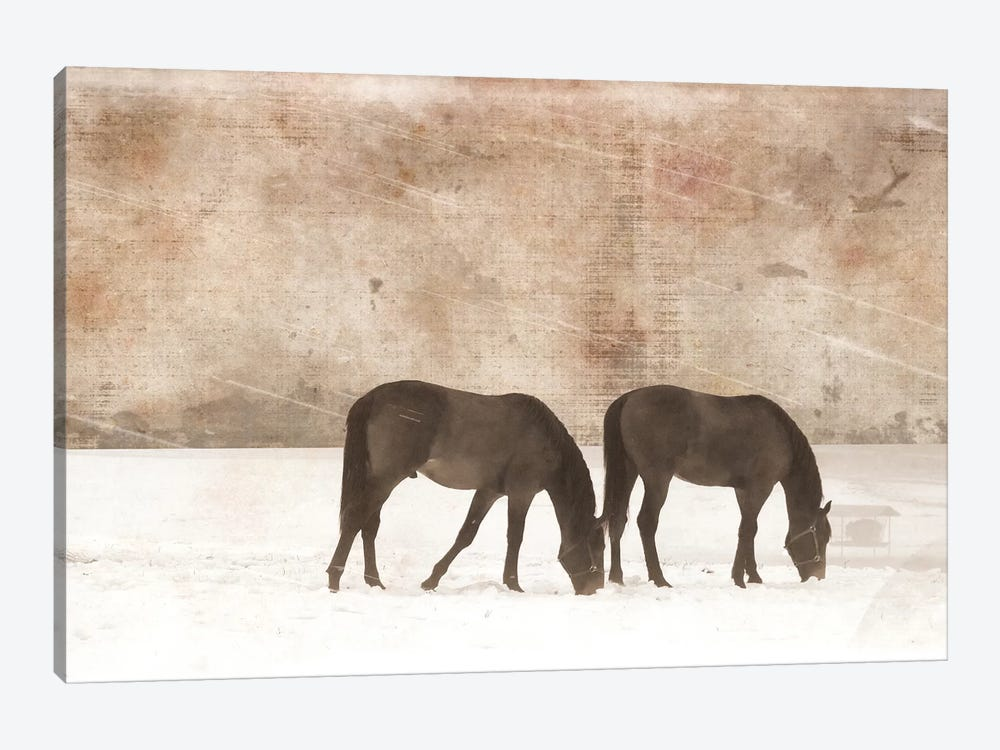 Grazing Pair by Erin Clark 1-piece Canvas Print