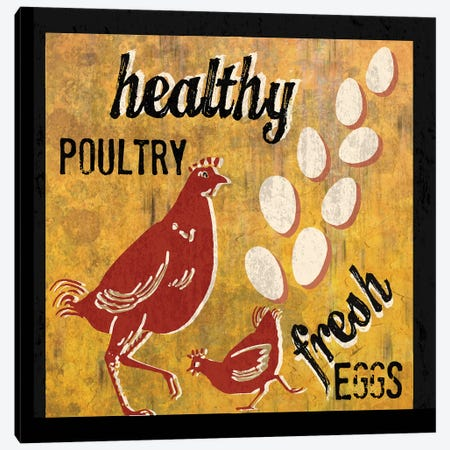 Healthy Poultry Canvas Print #ECK262} by Erin Clark Canvas Art Print