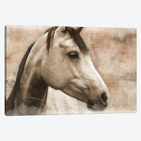 Horse Canvas Print #ECK271} by Erin Clark Canvas Art