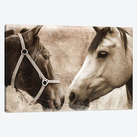 Horse Pair Canvas Print #ECK274} by Erin Clark Art Print