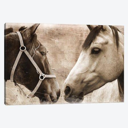 Horse Pair Canvas Print #ECK274} by Erin Clark Art Print