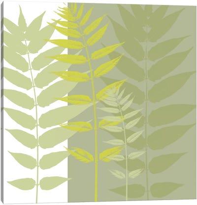 Field Greens Canvas Art Print