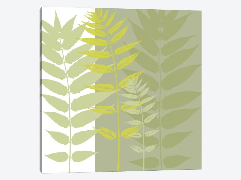 Field Greens by Erin Clark 1-piece Canvas Print