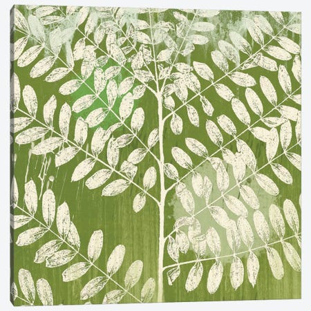 Jade Foliage Canvas Print #ECK66} by Erin Clark Canvas Art Print