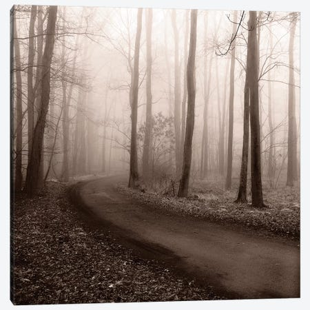 Misty Lane Canvas Print #ECK75} by Erin Clark Canvas Wall Art