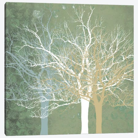 Quiet Forest Canvas Print #ECK81} by Erin Clark Canvas Wall Art