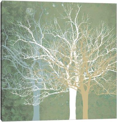 Quiet Forest Canvas Art Print