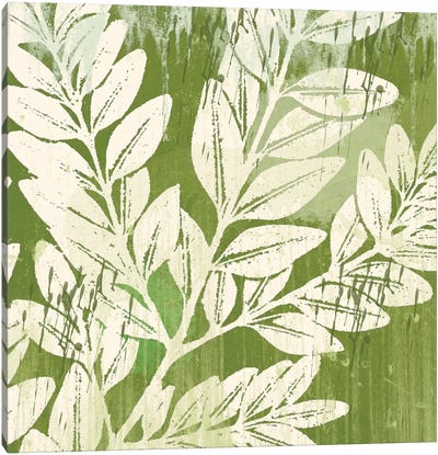 Sage Foliage Canvas Art Print