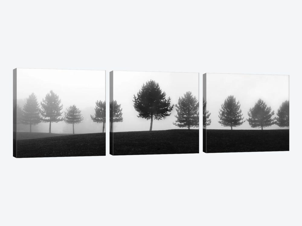 Tree Line by Erin Clark 3-piece Canvas Artwork