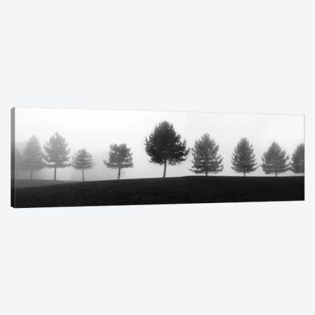 Tree Line Canvas Print #ECK87} by Erin Clark Art Print