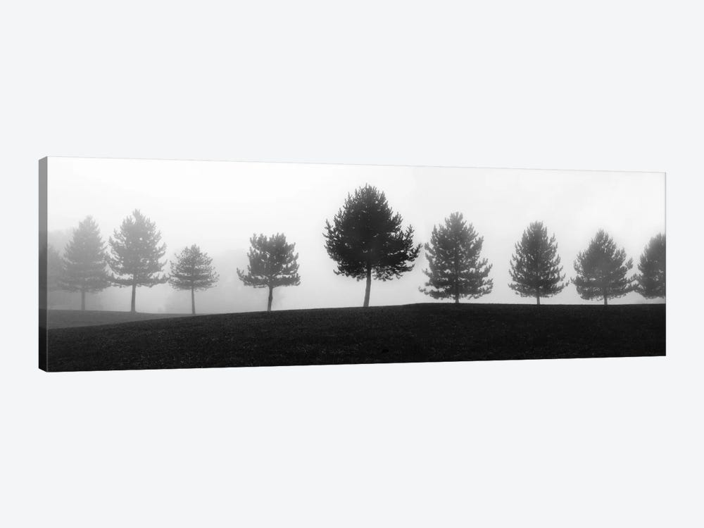 Tree Line by Erin Clark 1-piece Canvas Art