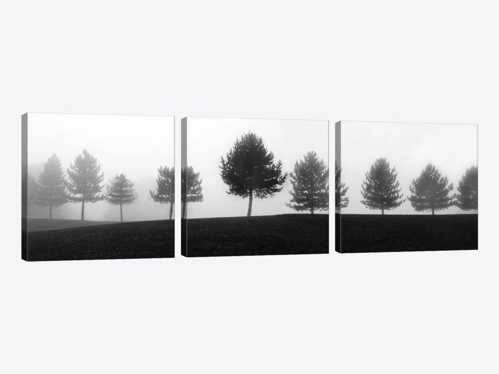 Tree Line by Erin Clark 3-piece Canvas Artwork