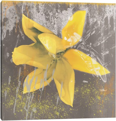 Yellow Tulip Fresco Canvas Art Print
